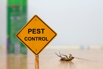 Pest Contol in Fulham, SW6. Call Now 020 8166 9746