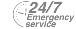 24/7 Emergency Service Pest Control in Fulham, SW6. Call Now! 020 8166 9746
